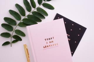 cahier de gratitude